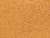 MOODSTRUCK SPLURGE Cream Shadow - Extravagant – Golden sun shimmer
